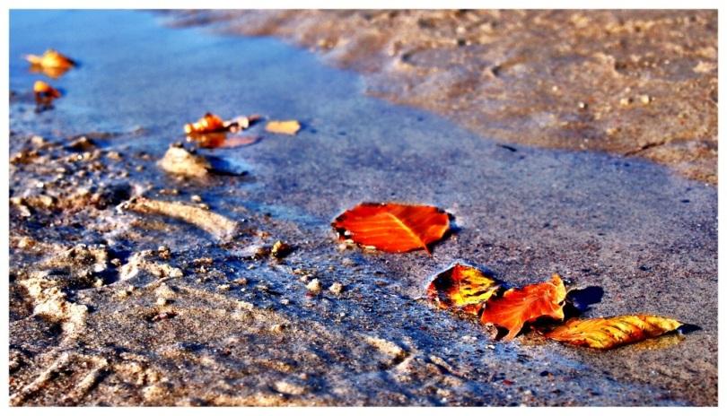 Herbst in Warnemünde