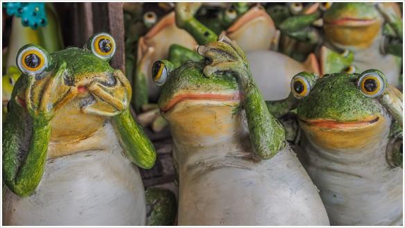Die drei Frösche der Apokalypse - Foto: h|b