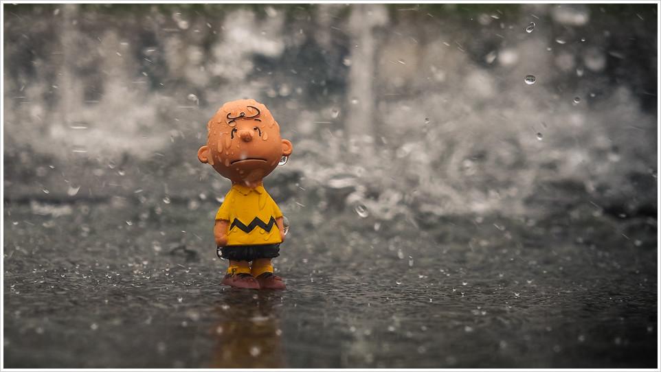 Der kleine Charlie steht im Regen - Foto: h b OM-D E-M5 - 12-40 2.8 PRO