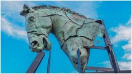 Pferdekopf - Foto: h|b [Olympus OM-D E-M5, 12-40/2.8 Pro, 17mm / f.5,6 / ISO 200]