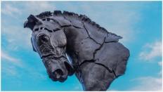 Pferdekopf - Foto: h b [Olympus OM-D E-M5, 12-40/2.8 Pro, 15mm / f.5,6 / ISO 200]
