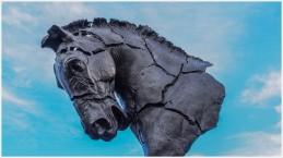 Pferdekopf - Foto: h|b [Olympus OM-D E-M5, 12-40/2.8 Pro, 15mm / f.5,6 / ISO 200]