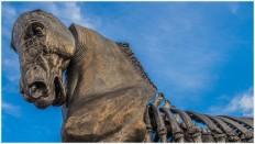 Bronzepferd am Brandenburger Tor - Foto: h b [Olympus OM-D E-M5, 12-40/2.8 Pro, 12mm / f.8 / ISO 200]