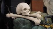 Knochenschädel auf zwei Knochen
