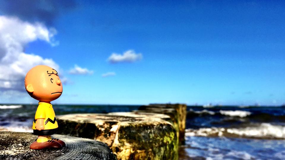Charlie Brown auf einem Wellenbrecher an der Ostsee