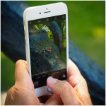 iPhone im Fotomodus