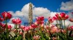 Der Skulpturenpark Vigeland in Oslo - Foto: h|b
