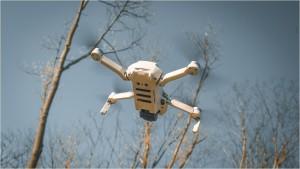 Drohne Mavic Mini vor Bäumen