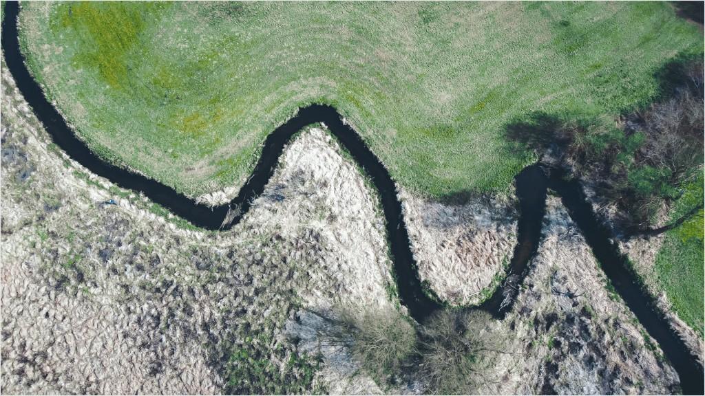 Tegeler Fließ aus Drohnensicht