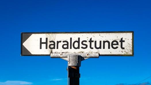 Haraldstunet