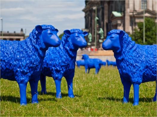 """Die """"Blauen Schafe"""" des Blauschäfers Rainer Bonk"""