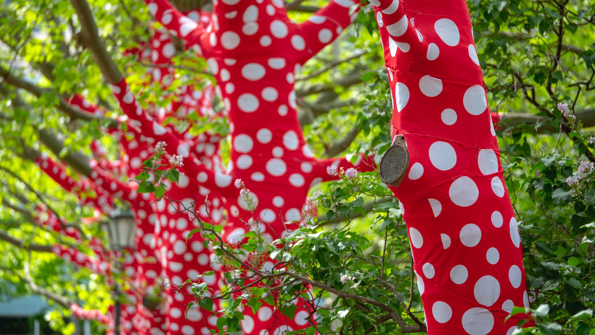Bäume umhüllt von rotem Stoff mit weißen Punkten