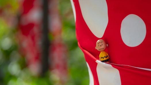 Polkadots mit Charlie Brown