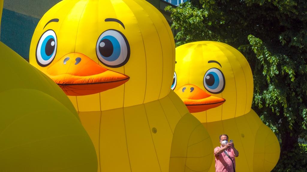 Große aufblasbare Enten