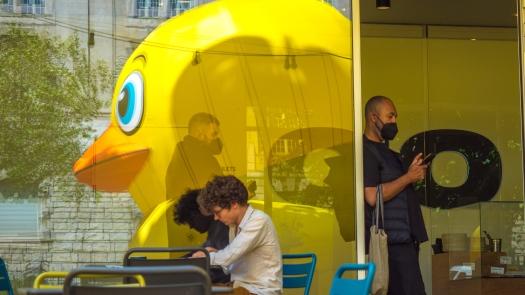 Menschen und Enten im Spiegel von Fenstern